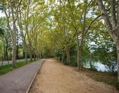 Beautiful walkway view by lake — Stock Photo
