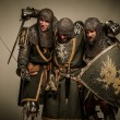 Medieval knights — Stock Photo #18654679