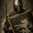 Medieval knight — Stock Photo #18654699