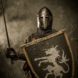 Medieval knight — Stock Photo #18654701