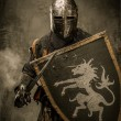 Medieval knight — Stock Photo #18654711