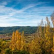 Beautiful autumn landscape view on sunny day — Stock Photo #19606121