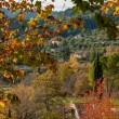 Small town view in autumn landscape - Stock Photo