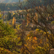 Small town view in autumn landscape — Stock Photo #19606261
