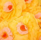 Big yellow flowers — Stock Photo