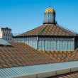 Roof of Born Market - Stockfoto