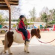 Little boy riding on pony - Stock Photo