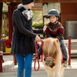 Mother riding her son on a pony wearing protective helmet — ストック写真