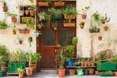 Building facade with lot of flower pots — Stock Photo