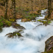 Fast river in mountains — Stock fotografie