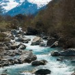 Быстрая маленькая река в горном лесу — Стоковое фото #25852143