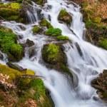 Rio pequeno rápido na floresta de montanha — Foto Stock