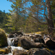 Stock Photo: Fast river in mountain forest