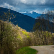 Asphalt road in Pyrenees mountains — Stock Photo