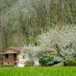 Rural house in spring landscape - Stock Photo