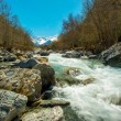 Fast river in mountain forest — Foto Stock