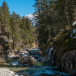 Fast river in mountain forest — Stockfoto #26309655