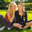Two smiling athletic girls sitting on a grass in a park — Stock Photo #28673629