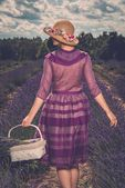Woman in purple dress and hat with basket in lavender field — Stok fotoğraf
