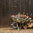 Wheelbarrow with logs standing — Stock Photo