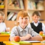 Children in school — Stock Photo #30903811
