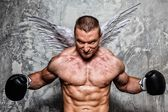 Boxer with angel wings — Stock Photo