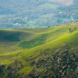 Hill in a beautiful landscape — Stock Photo #32304433