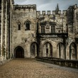 Palais des Papes in Avignon, France — Stock Photo