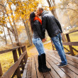 Happy middle-aged couple kissing outdoors on beautiful autumn day — Stock Photo #33868803