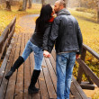 Happy middle-aged couple kissing outdoors on beautiful autumn day — Stock Photo #33870177