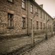 Electric fence in former Nazi concentration camp Auschwitz I, Poland — Stock fotografie