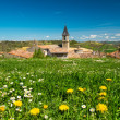 Flower field in front of Lautrec village, France  — Stock Photo