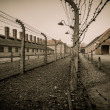 Electric fence in former Nazi concentration camp Auschwitz I, Poland — Стоковая фотография