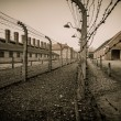 Electric fence in former Nazi concentration camp Auschwitz I, Poland — Stok fotoğraf