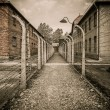 Electric fence in former Nazi concentration camp Auschwitz I, Poland — Foto Stock