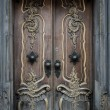 Old wooden door with beautiful decoration — Stock Photo #36577885