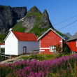 Traditional wooden houses against mountain peak in Reine village, Norway — Foto de Stock