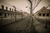 Electric fence in former Nazi concentration camp Auschwitz I, Poland — Stock Photo