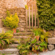 Stock Photo: Old steps with different plant and wicket