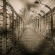 Stock Photo: Electric fence in former Nazi concentration camp Auschwitz I, Poland
