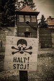Cerca eléctrica en la concentración de ex nazi campo auschwitz i, polonia — Foto de Stock
