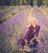 Woman in purple dress and hat with basket in lavender field  — Stock fotografie
