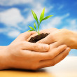 Human hands holding earth with plant sprout against blue sky — Stock Photo #43198329