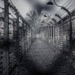 Electric fence in former Nazi concentration camp Auschwitz I, Poland — Stock Photo #44582419