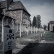 Electric fence in former Nazi concentration camp Auschwitz I, Poland — Stock Photo #44582431