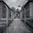 Electric fence in former Nazi concentration camp Auschwitz I, Poland — Stock Photo #44582453