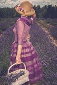 Woman in purple dress and hat with basket in lavender field  — Stock Photo