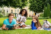 Group of multi ethnic students in a city park  — Stock fotografie