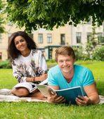 Coppia di studenti etnico multi preparazione per gli esami finali in un parco di città — Foto Stock