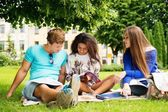 Group of multi ethnic students in a city park  — Stock Photo